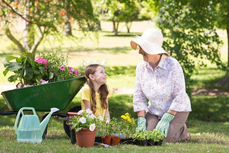 Gardening for the elderly