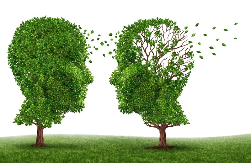 What is the difference between dementia and Alzheimer's?